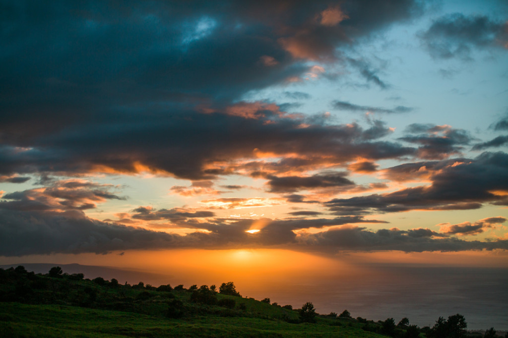 upcountry-maui-engagement-0054